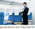 cabin, attendant, female 36228520