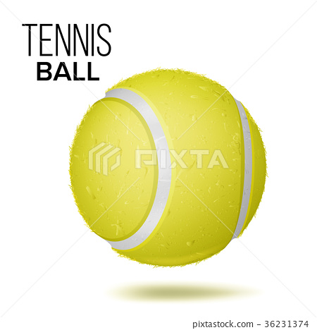 Yellow Tennis Ball Isolated Vector. Realistic 36231374