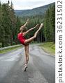ballet, ballerina, forest 36231502
