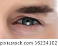 Realistic Eye Of Caucasian Male Person Closeup 36234102