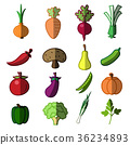 vegetables, icon, vegetable 36234893