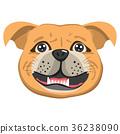 Bordeaux Dog Avatar 36238090