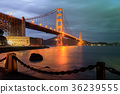 Golden Gate Bridge and Chain Link Fence at Night. 36239555