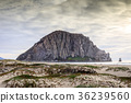 Morro Rock with Sandy Dunes of Morro Creek Beach. 36239560