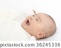嬰兒 寶寶 寶貝 36245336