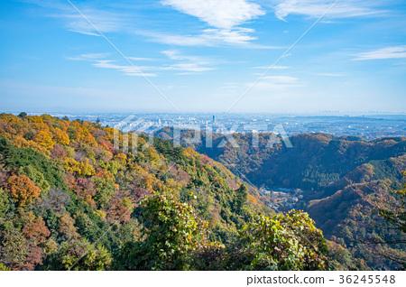 카오산 가을 등산 길이나 리 야마 코스 아즈마 가게에서 도심 방면의 전망 36245548