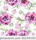 Wildflower poppy flower pattern in a watercolor 36249303