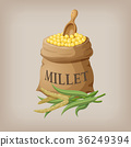 An image of raw yellow millets in a bag. Vector 36249394