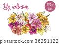花朵 花 花卉 36251122