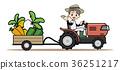 เกษตรกรรม,แทร็กเตอร์,คน 36251217