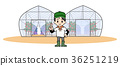 agriculture farming greenhouse 36251219