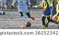 축구 축구 36252342