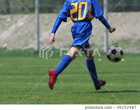 축구 축구 36252487
