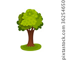 Green tree with round crown vector Illustration 36254650