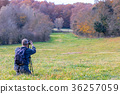 Photographer take pictures  of beech forest  36257059