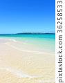 มหาสมุทร,ชายหาด,หาดทราย 36258533