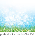 Vector  nature  background. 36262351
