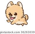 毛孩 狗 狗狗 36263039