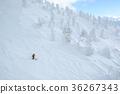 滑雪 下雪 雪 36267343