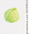 양배추, 야채, 채소 36269633