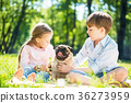 Children in park with pet 36273959
