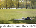 Green beautiful park with soccer ball 36278820