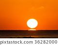 일출, 해돋이, 바다 36282000