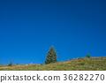 mountain, rocky mountains, rocky mountain 36282270