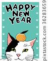 แมว,ส้มแมนดาริน,ไปรษณียบัตร 36283659