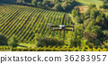 drone field quadrocopter 36283957