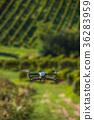 drone field quadrocopter 36283959