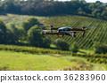 drone field quadrocopter 36283960