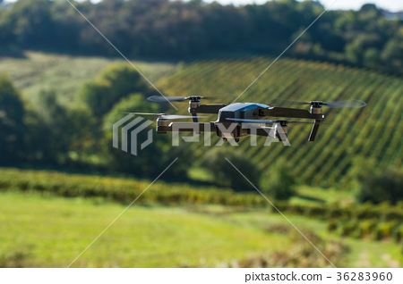 Drone flying landscape with vineyards 36283960