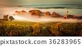 Sunset landscape bordeaux wineyard france 36283965