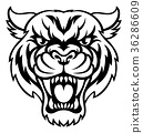 Angry Tiger Sports Mascot 36286609