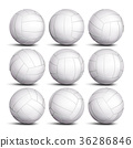 Realistic Volleyball Ball Set Vector. Classic 36286846