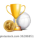 volleyball ball trophy 36286851