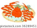 雪螃蟹白色背景 36289451