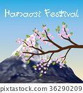hanami festival sakura branch and fuji mountain 36290209