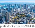 도쿄, 동경, 베이 에어리어 36291436