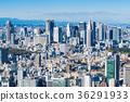 tokyo, shinjuku, scene 36291933