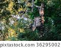 telegraph pole, electric pole, kagawa 36295002