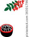 검은 콩 정월 남방 36301796