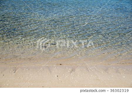 하 토마 섬 야라 바닷가 (오키나와) 36302319
