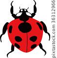 Ladybug 36312966