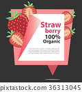 Vector Banner Strawberry 100% Organic. 36313045