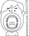 성인 32 개의 사랑니 치아 입안 일러스트 벡터 흑백 36317174
