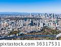tokyo, shinjuku, scene 36317531