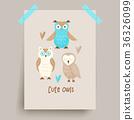 owl cute vector 36326099