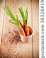 fresh carrots bunch in white bucket 36326419